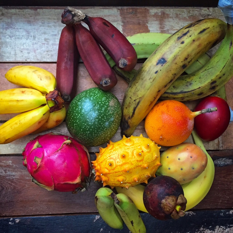 Bunte Auswahl tropischer Früchte