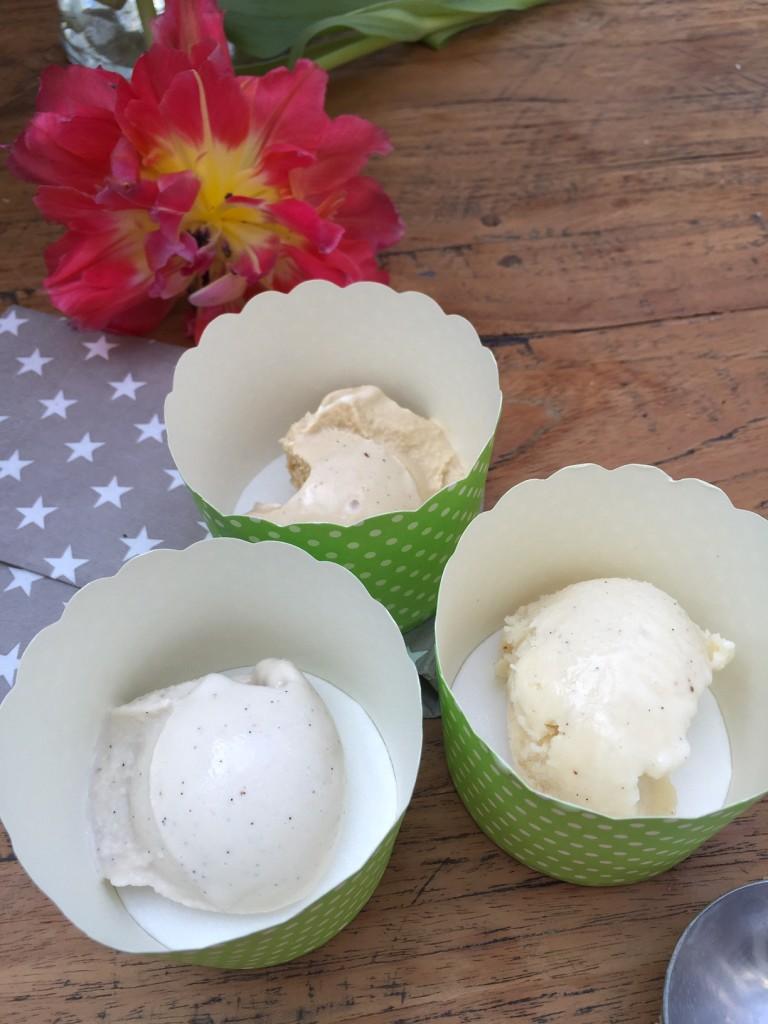 Vanille Eis mit Tonkabohnen vegan und mit tierischen Zutaten